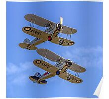A pair of Gloster Gladiators Poster