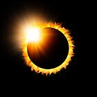 Solar Eclipse by Paul Morley