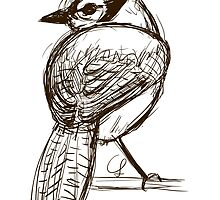 Blue Jay Sketch by unicorndoodles