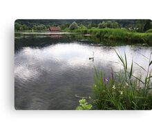 Edge of Lake with Swan Canvas Print