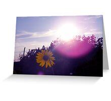 Shining Sunflower Greeting Card