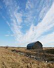 Big Sky by Todd Weeks