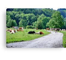 (Very) Rural Scene Canvas Print