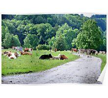(Very) Rural Scene Poster