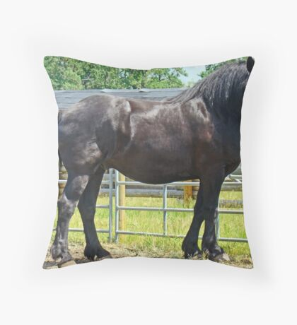 Black Percheron Throw Pillow