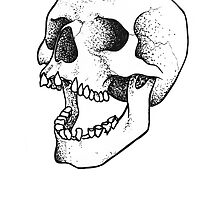 Laghing Skull by BROENNER