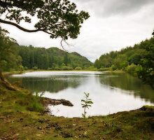Yew Tree Tarn by Steve  Liptrot