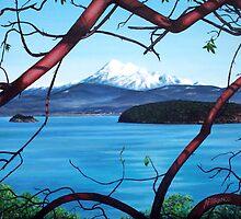 Manzanita View ( Mount Baker ) by A. F. Branco