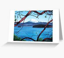 Manzanita View ( Mount Baker ) Greeting Card