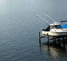 Annapolis Docks by Jonathan  Yuen