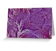 Lavender Lavish Greeting Card
