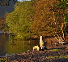 Early morning at Ullswater by Peter Hammer