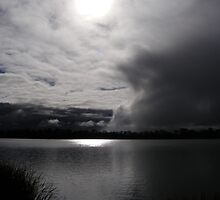 Moonlight Storm - Lake Curlew, NSW by Gregory McInnes