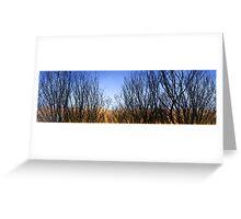 Flinders Ranges Panoramas 5 Greeting Card