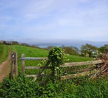 View from the gate on Coastal Path, Lyme. Dorset UK by lynn carter