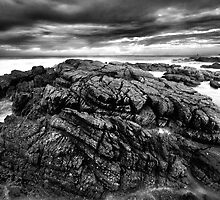 Contrasts by Garth Smith