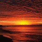 Sunrise Miracle by Diana Grunwald