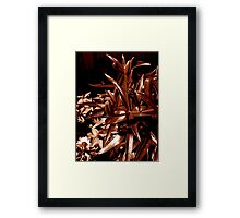 Chocolate Garden Framed Print