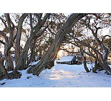 Wallace Hut Dawn, Falls Creek, Victoria, Australia Photographic Print
