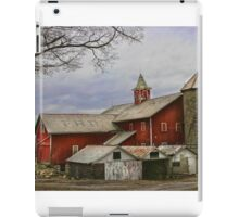 """ Homestead "" iPad Case/Skin"