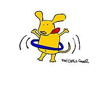 Yellow Dog Blue Hoop Photographic Print