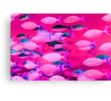 Fishy Business Canvas Print