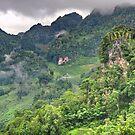 Karst landscape, Thailand by John Spies