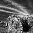 Bales in Mono by Hans Kawitzki