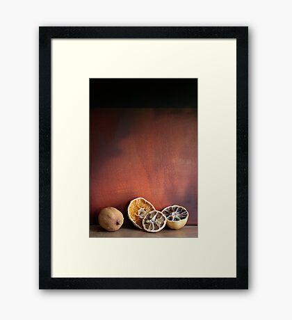 Still life Dried fruit Framed Print