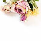 Dried Rose by naffarts