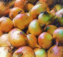 Onions In Pencil by Dave Lloyd