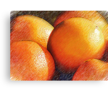 Oranges In Pencil Canvas Print
