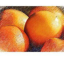 Oranges In Pencil Photographic Print