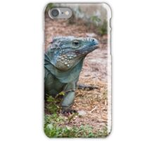 Blue iguana iPhone Case/Skin