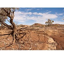 Dry country Photographic Print