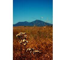 Saddleback Mountains Photographic Print