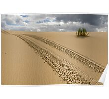 Tracks in Sand Poster