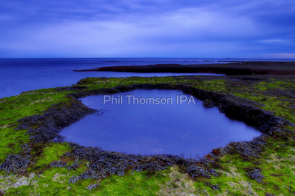 """""""Lonsdale Shoreline"""" by Phil Thomson IPA"""