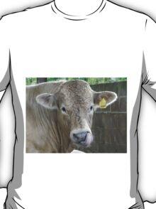 Cheeky Cow T-Shirt