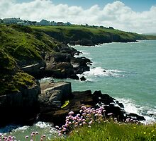 Gwbert Cliffs, Cardigan Bay by ouhouse