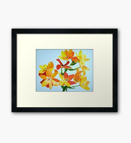 Sunstar Framed Print