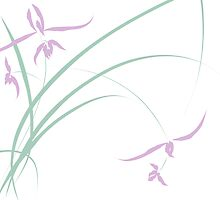 Grass Orchid1 by debsrockine