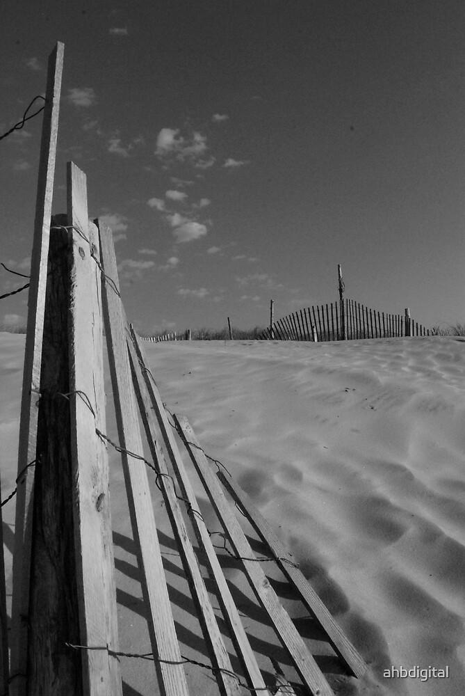 Dune by ahbdigital
