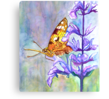PAINT THIS PHOTO ! - PAINTED LADY (challenge) Canvas Print