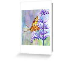 PAINT THIS PHOTO ! - PAINTED LADY (challenge) Greeting Card