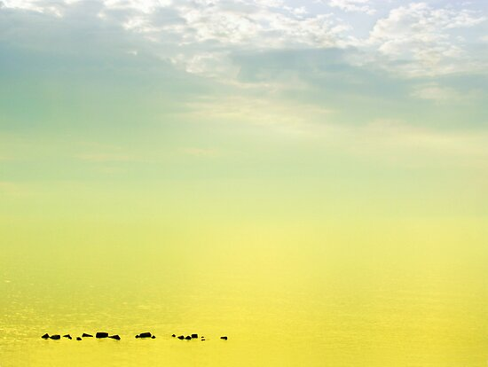 Zen seascape with rocks by Silvia Ganora