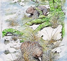 Echidna and wombat by SnakeArtist