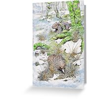 Echidna and wombat Greeting Card