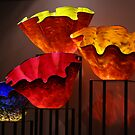 More Chihuly by noffi
