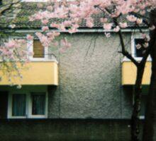Holga Blossom Sticker